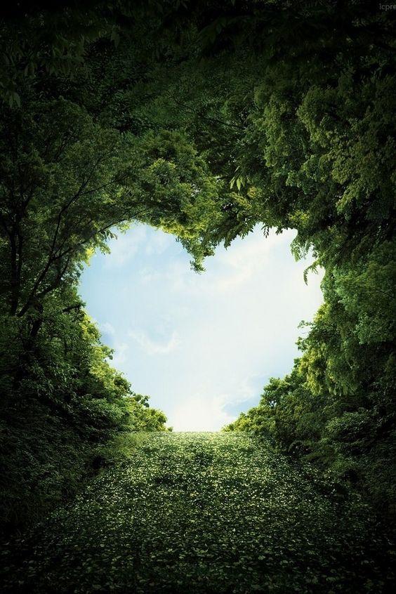 Orgulho no Coração e o Paraíso